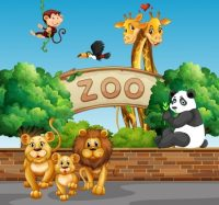 Optimized-doj5_zoo_160504.jpg